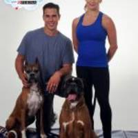 Purina and Celebrity Couple Brady Quinn and Alicia Sacramone Quinn Issue Challenge to Roll Over Pet Hunger During National Pet Month in May