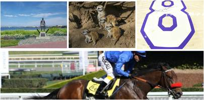 Francis Ford Coppola Immortalized; Race Horse Phenom; Navy SEAL Museum; Stagecoach Fest: Saturday Smiles