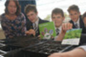 seeds from space planted by budding uffculme scientists as part...