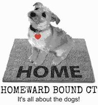 Homeward Bound Shelter Dog Adoption Event Taking Place in May