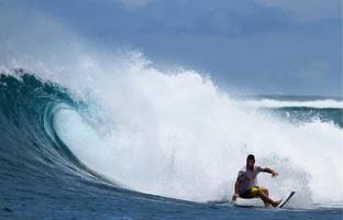 surf fans can now go on vacation with their heroes