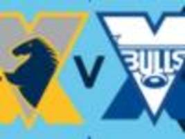 Live: Brumbies host Bulls in Canberra