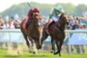 cambridge news published dante stakes 2016: john gosden's wings of desire strengthens...