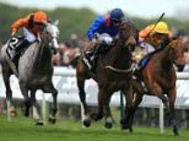 clever cookie claims yorkshire cup victory on the last day of york's may meeting