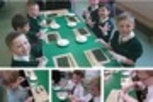 plymouth pupils make sushi in the classroom