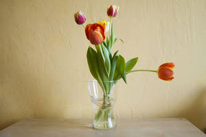Life Hack: Make Flowers Last Longer By Following These 8 Simple Steps