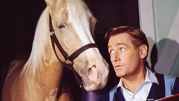 Mister Ed actor dies aged 96