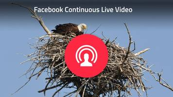 Facebook's new API lets you livestream forever — but you can't save the broadcast