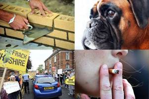 Morning news headlines: Higher pay in building trade as firms struggle with lack of skilled workers; Charity urges crackdown on 'barbaric' dog fighting