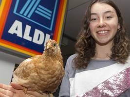 aldi caves to teen's caged eggs petition