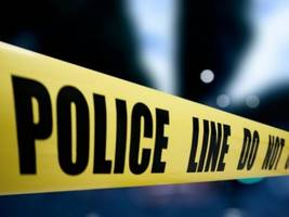 'suspicious' person in yard was pool man; fatal bicycle collisions; kitten rescue: east bay police log
