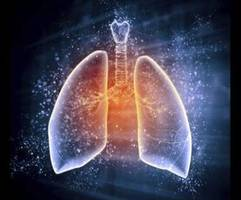 a new test can help faster detection of pathogens that cause tuberculosis