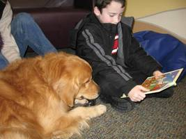 wayne library hosting summer read-to-a-dog party