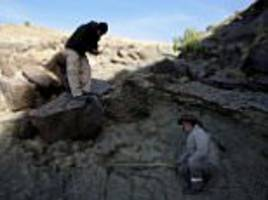 Huge metre-wide dinosaur print is discovered in Bolivia
