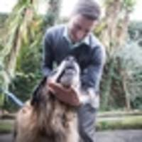 caring chiropractor clicks with his tail-wagging clientele