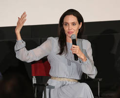 angelina jolie to visit georgetown university as visiting professor?
