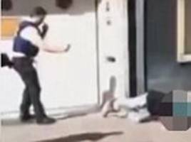 chilling moment the machete-wielding woman who hacked at three people in a bloody rampage in brussels is shot at point-blank range by police
