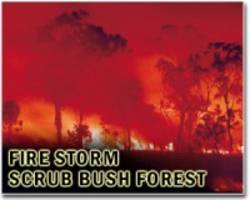 Washington state declares emergency due to wildfires