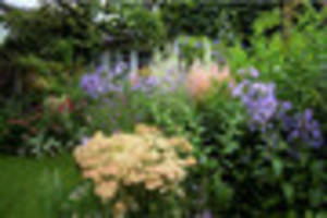 gardening:  'modern gardens should have colour all the year...