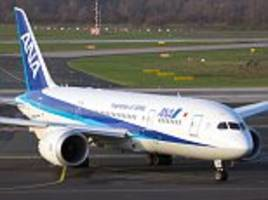 ana plane forced to make emergency landing after pilot spotted cracks in windscreen