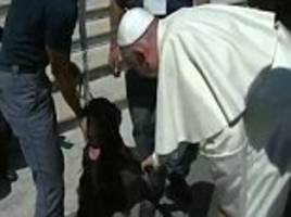 pope francis meets hero dog who rescued girl in italy earthquake aftermath