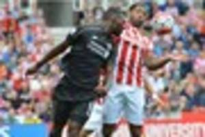 crystal palace v stoke city: meet the 11 lying in wait at the...