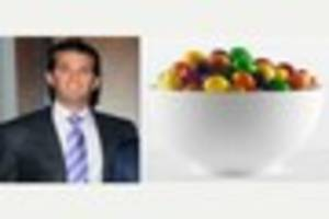 Donald Trump Jr likens Syrian refugees to Skittles – and...
