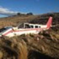 Pilot was trying to clear cattle before fatal crash