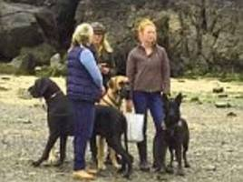 Dog owners shamed on Facebook after their Great Dane left 'enormous' mess on a beach