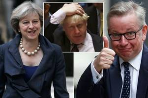 tory traitors exposed as book by cameron aide lifts lid on brexit backstabbers and 'submarine' theresa may