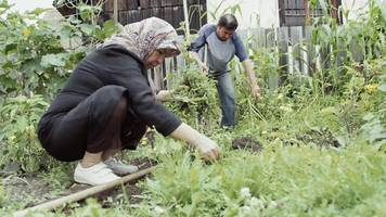 Refugees plant roots in Austria's gardens