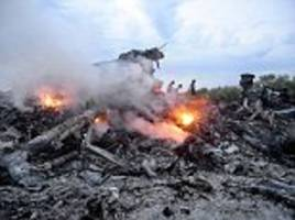 Launch site of deadly rocket strike that brought down MH17 over Ukraine WAS in territory held by pro-Russian rebels, claims victim's family - but culprits won't be named by investigators