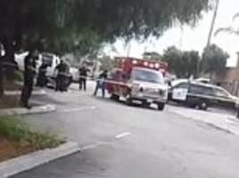 'Unarmed' black man who was 'acting erratically' is shot by police in San Diego suburb amid claims cops confiscated witnesses cell phones