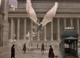 Monsters and War Unleashed in New 'Fantastic Beasts and Where to Find Them' Trailer