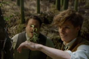 Watch the first full trailer for Fantastic Beasts and Where to Find Them