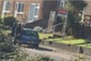 Armed police arrest two on suspicion of drugs offences in Newton...