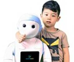 ipal is the controversial child sized machine which 'can be used as a babysitter'
