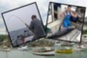 Fishermen land monster 5ft tuna near Plymouth after two-hour...