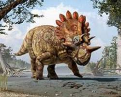 Ornamented heads drove arms race of giant dinosaur bodies