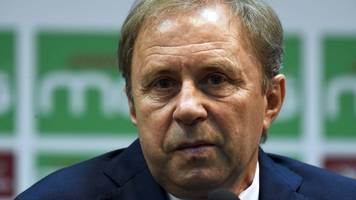 milovan rajevac quits as algeria coach after two games