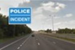 police with dogs are hunting for a man who fled a crash on the...