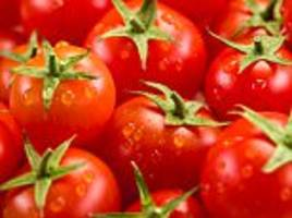 Don't put your tomatoes in the fridge! Chilling the fruit leads to an 'insipid' flavour