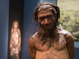 Interbreeding helped us get through the Ice Age: Sex with Neanderthals allowed early man to develop a stronger immune system
