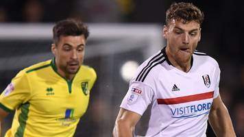 martin double denies former club norwich