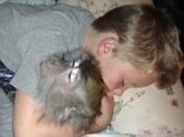 Who needs a teddy bear? Cute video shows little boy and pet monkey having a snooze together