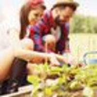 long weekend's time for green thumbs to get working