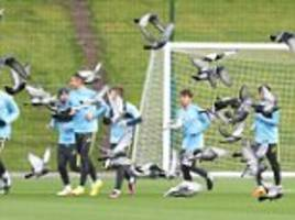 manchester city players witness pidge-invasion as they train ahead of efl cup trip to local rivals united