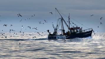 scottish fishermen's federation leaders hold brexit meetings