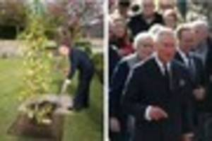 'despicable' theft of royal tribute  at aberfan memorial