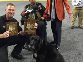 hermosa beach police k-9 team wins at las vegas k-9 competition